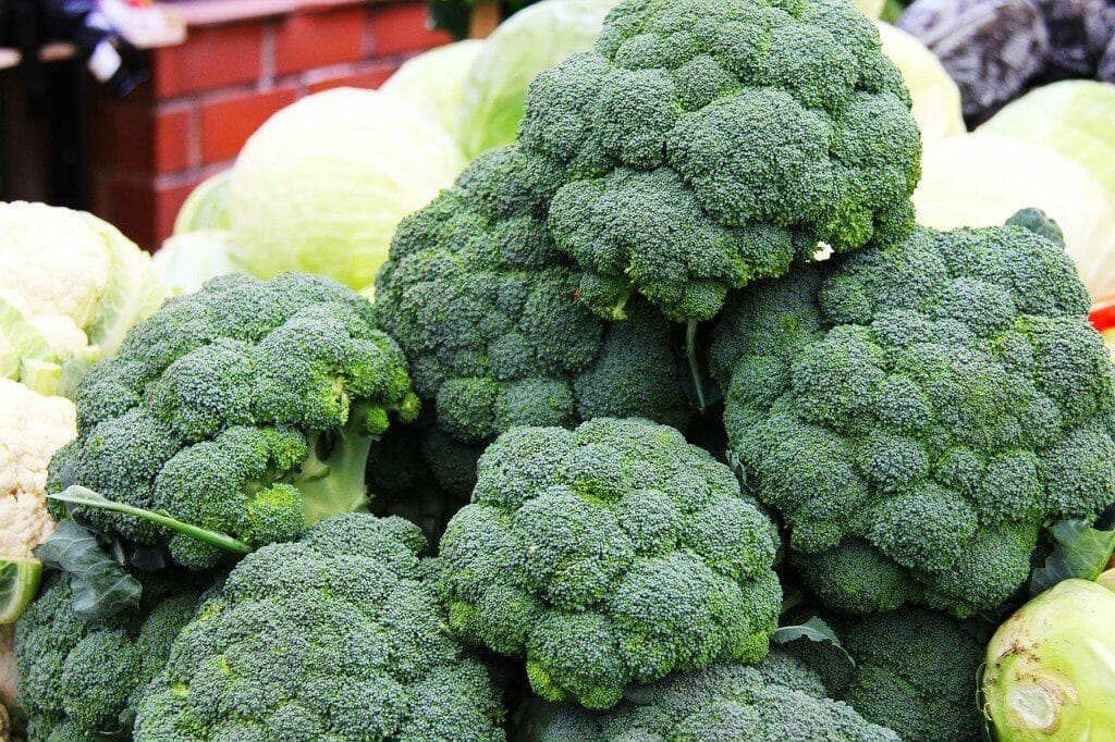 Stare in forma con i broccoli